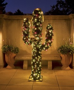 Merry Christmas, from all of us in the desert!